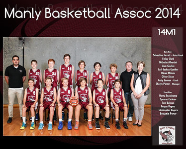 Manly Team 2014 14M1 (Large)
