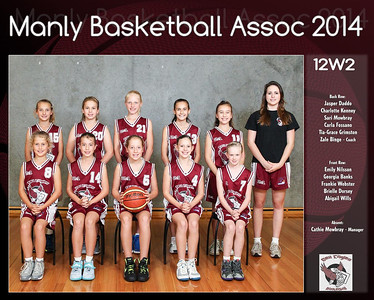 Manly Team 2014 12W2 (Large)