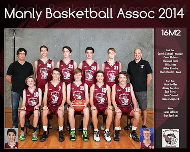 Manly Team 2014 16M2 (Large)
