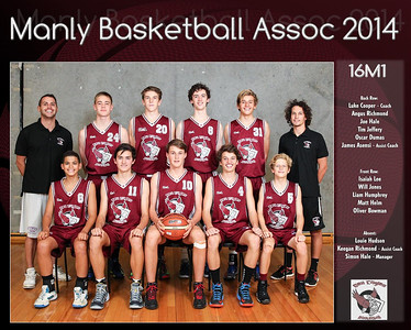 Manly Team 2014 16M1 (Large)