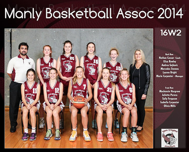 Manly Team 2014 16W2 (Large)