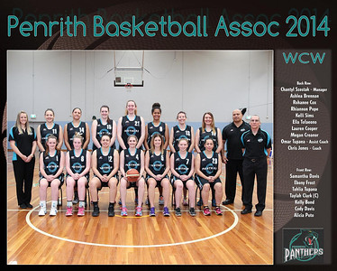 Penrith Team 2014 WCW (Large)