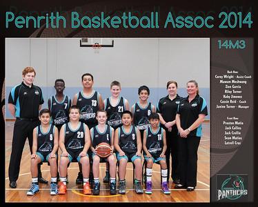 Penrith Team 2014 14M3  (Large)
