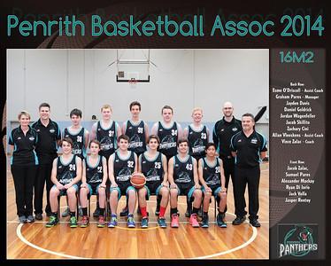 Penrith Team 2014 16M2 (Large)