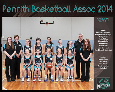 Penrith Team 2014 12W1 (Large)
