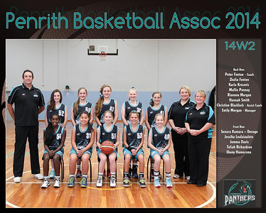 Penrith Team 2014 14W2-  (Large)