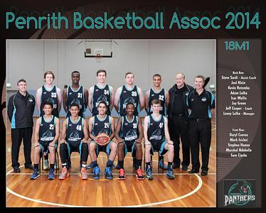 Penrith Team 2014 18M1  -  (Large)