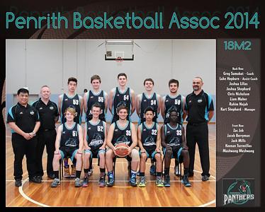 Penrith Team 2014 18M2 (Large)
