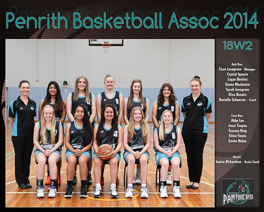 Penrith Team 2014 18W2 (Large)