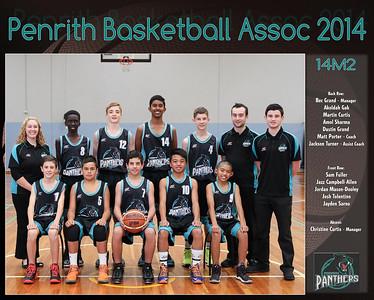 Penrith Team 2014 14M2 (Large)