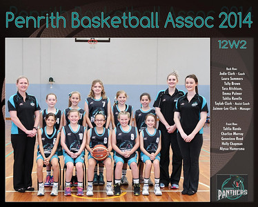 Penrith Team 2014 12W2 (Large)