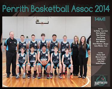 Penrith Team 2014 14 M1 (Large)