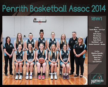 Penrith Team 2014 18W1  -  (Large)
