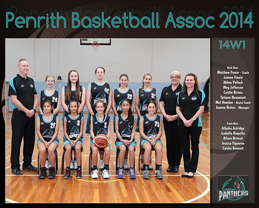 Penrith Team 2014 14W1 (Large)