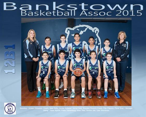 Bankstown Team 2015 12B1