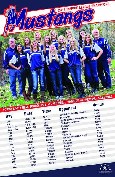 2011-12 ylhs baskertball poster
