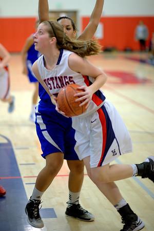 YLHS Women's Basketball 2013-14