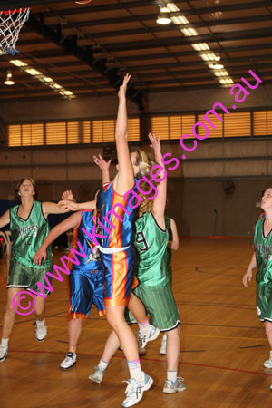 YLW Hornsby Vs CCC 14-6-08_0016