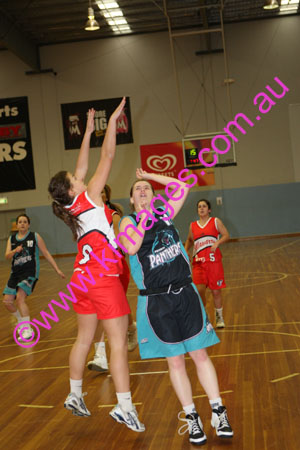 YLW Penrith Vs Illawarra 12-7-08_0019