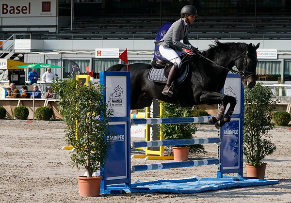 Pferdesporttage Schänzli 2018  © Klaus Brodhage (8)