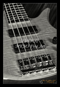 227.1951 Vic Wooten Classic 5 String in BW 1951