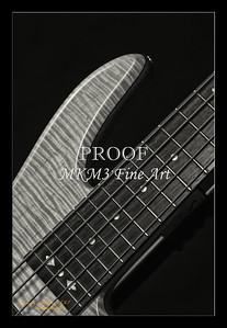 215.1951 Vic Wooten Classic 5 String in BW 1951