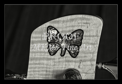 223.1951 Vic Wooten Classic 5 String in BW 1951