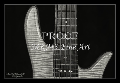 209.1951 Vic Wooten Classic 5 String in BW 1951