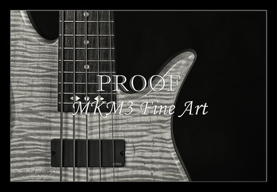 207.1951 Vic Wooten Classic 5 String in BW 1951