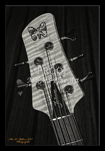 220.1951 Vic Wooten Classic 5 String in BW 1951