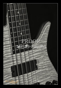 213.1951 Vic Wooten Classic 5 String in BW 1951