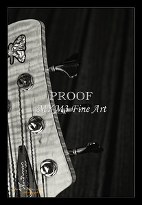 219.1951 Vic Wooten Classic 5 String in BW 1951