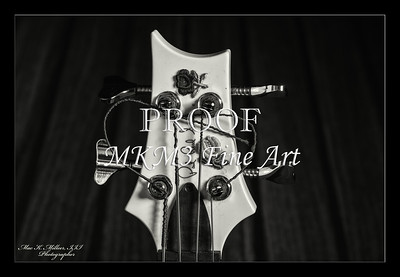 201.1952 PRS Bass in Black and White