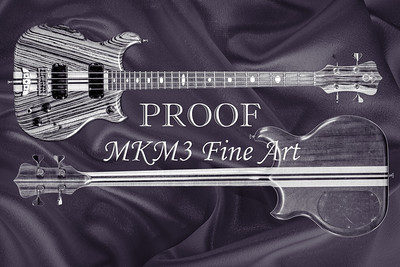 211.1836 Alembic Bass Guitar Black and White