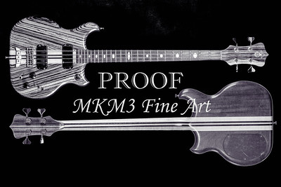 213.1836 Alembic Bass Guitar Black and White