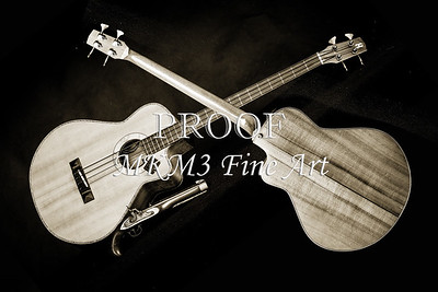 200.1838 Harris Acoustic Bass Black and White