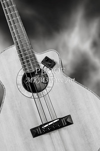225.1838 Harris Acoustic Bass Black and White