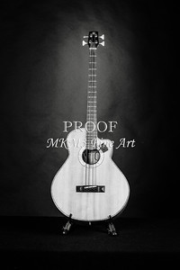 207.1838 Harris Acoustic Bass Black and White
