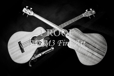 201.1838 Harris Acoustic Bass Black and White