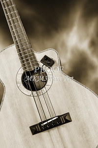 224.1838 Harris Acoustic Bass Black and White