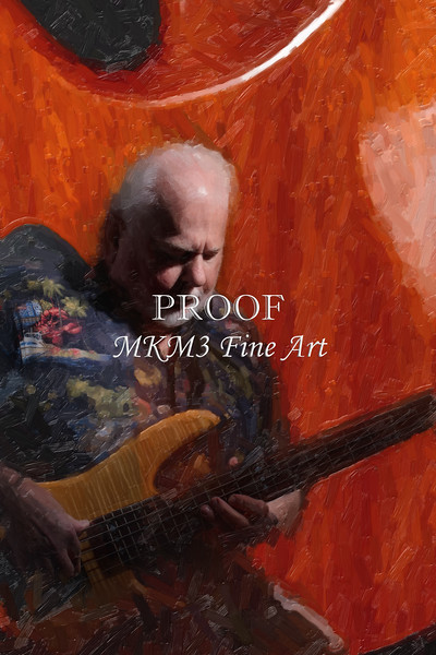 702.1954 Monarch Flame Maple 4 Bass Painting