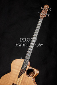 012.1835 Taylor AB1 Acoustic Electric Bass Color