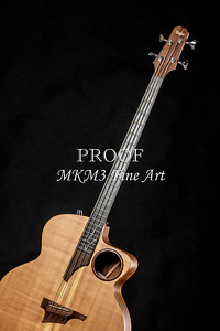 010.1835 Taylor AB1 Acoustic Electric Bass Color