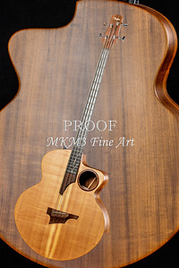 009.1835 Taylor AB1 Acoustic Electric Bass Color