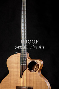013.1835 Taylor AB1 Acoustic Electric Bass Color