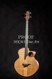 001.1835 Taylor AB1 Acoustic Electric Bass Color