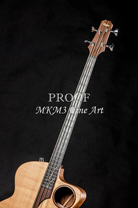 011.1835 Taylor AB1 Acoustic Electric Bass Color
