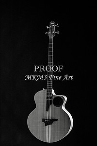 107.1835 Taylor AB1 Acoustic Electric Bass BW