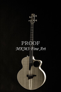 106.1835 Taylor AB1 Acoustic Electric Bass BW