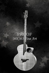 103.1835 Taylor AB1 Acoustic Electric Bass BW
